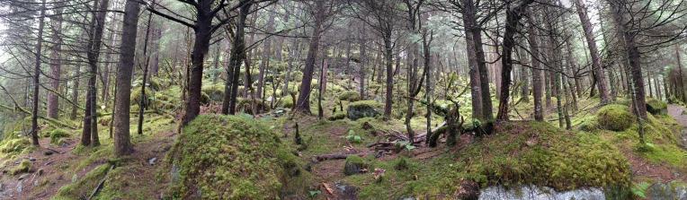 hike-panorama