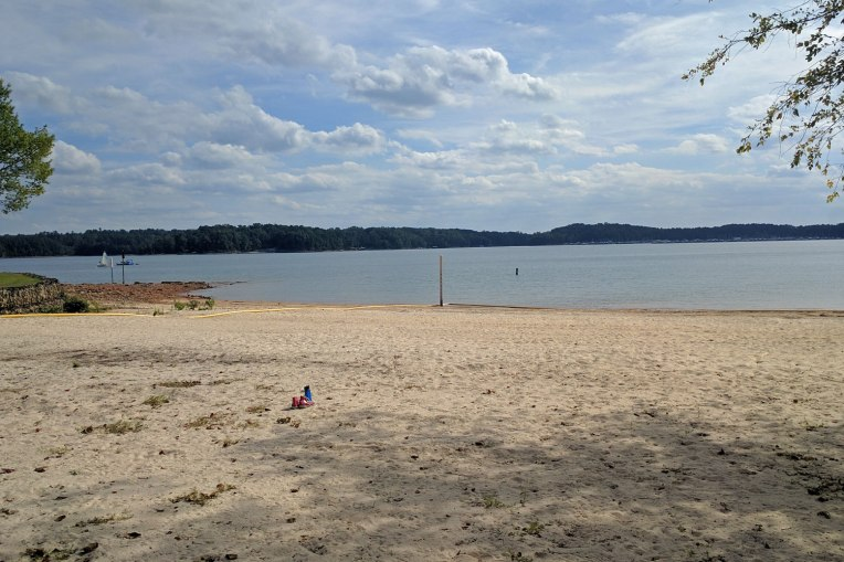 beach-line-lake-lanier