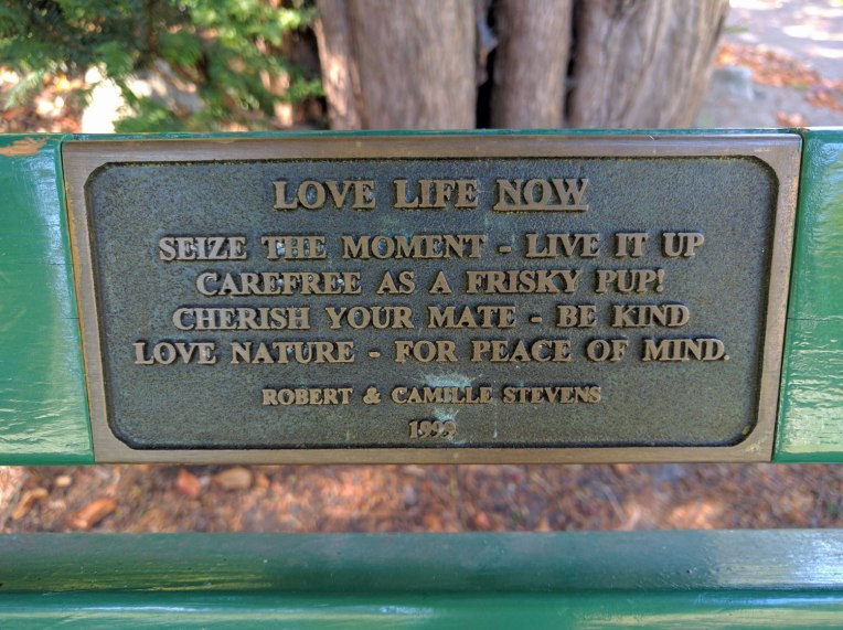 park-bench-mantra
