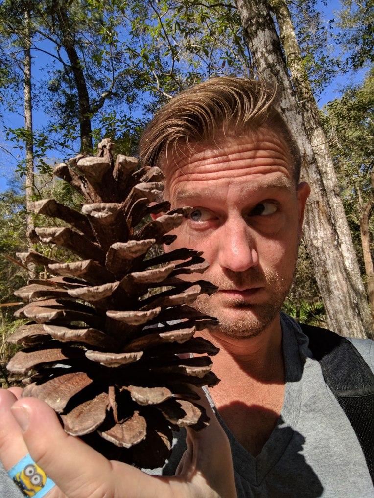 pine-cone-head